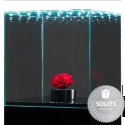Vitrine-LED-Glashaube mit Schloss und Drehflügeltür, 30 x 30 x 30 cm (LxBxH)